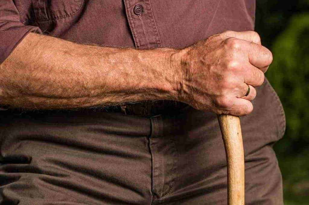 Come consultare il Cedolino pensione Ottobre 2018