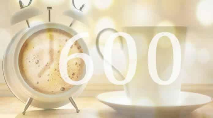Quanti pagamenti bonus 600 inps