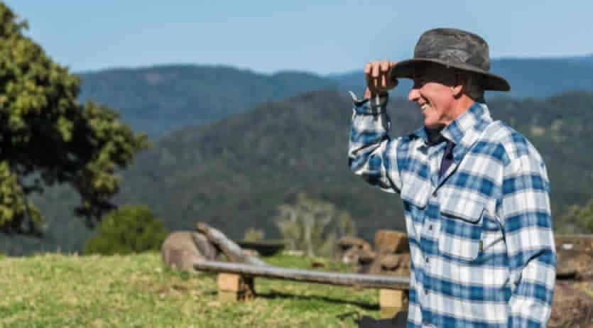 quando pagano ds agricola 2020