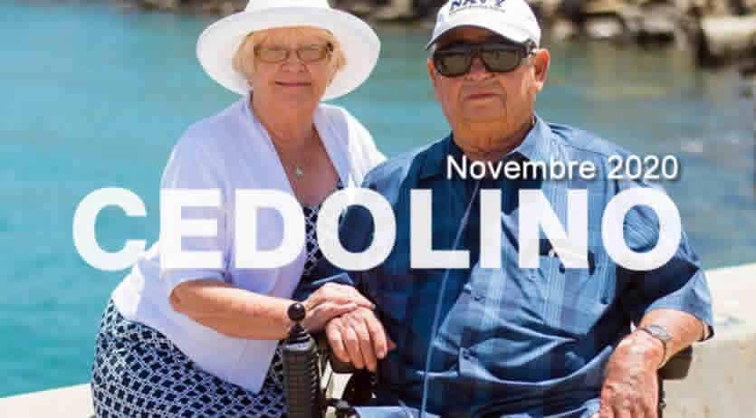 Come visualizzare Cedolino Pensione Inps Novembre 20