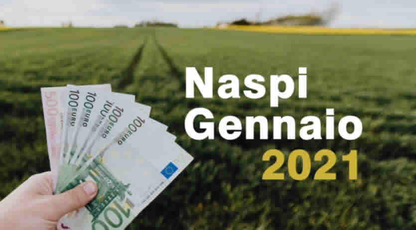 Quando pagano Naspi a Gennaio 2021