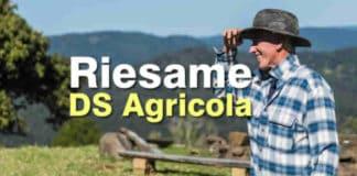 come fare riesame ds agricola