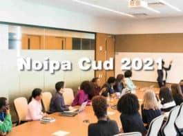 Come scaricare il CU Noipa 2021 online?