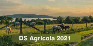 quando pagano disoccupazione Agricola 2021