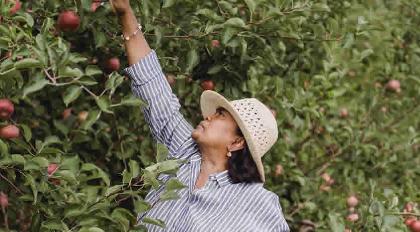 Elenchi annuali lavoratori agricoli anno 2020