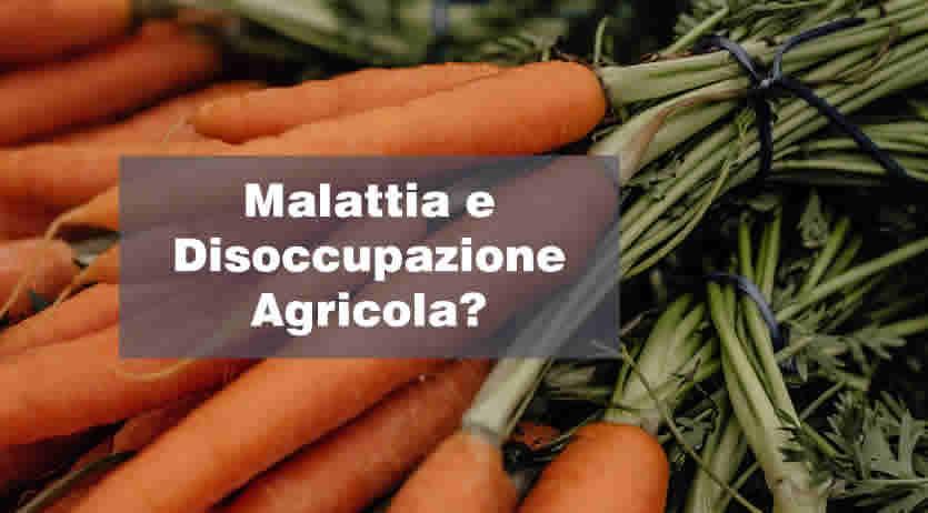 Malattia e Disoccupazione Agricola