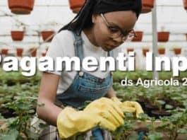 ds agricola 2021 da quando viene pagata